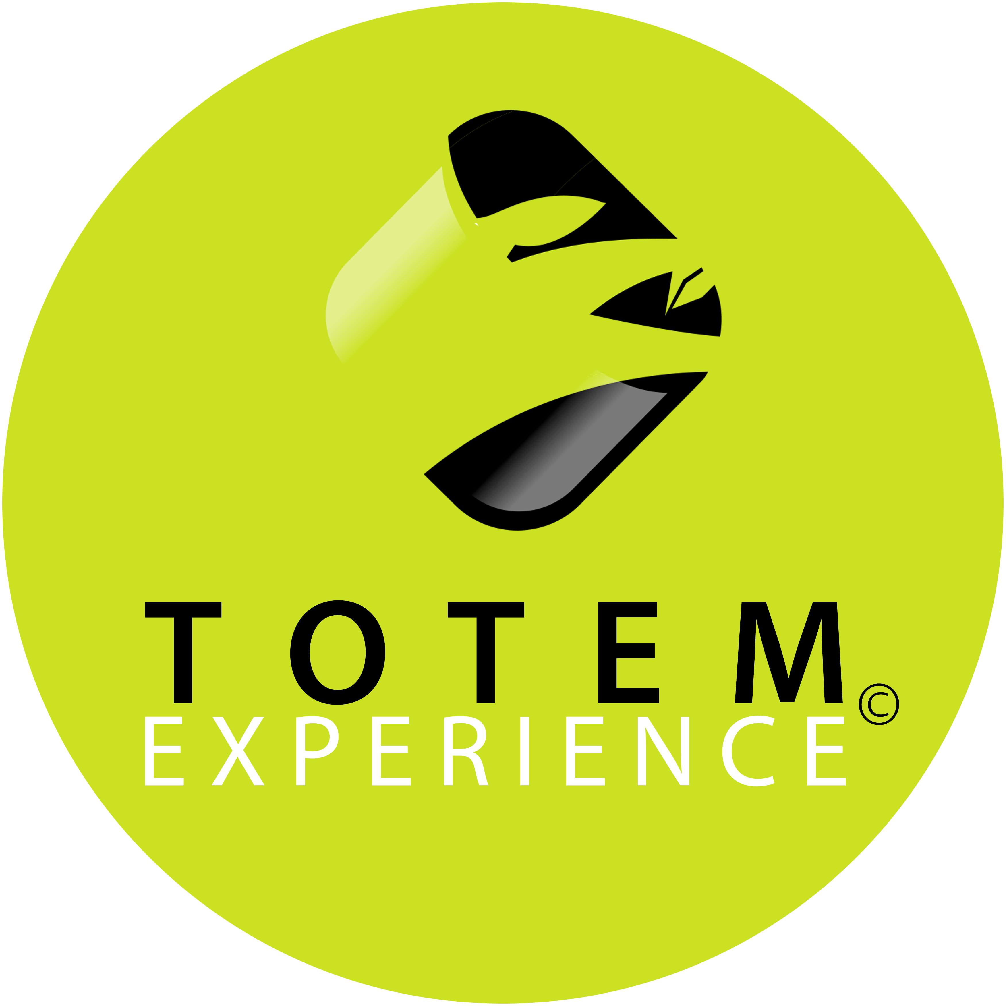 Totem Experience